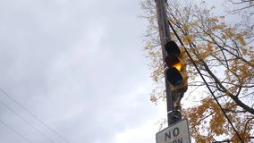 A street light goes from green to red in autumn stock footage