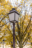Street light lamp on background of branches of autumn beautiful bright orange multicolored leaves of tree wonderful grandeur of na Royalty Free Stock Photo
