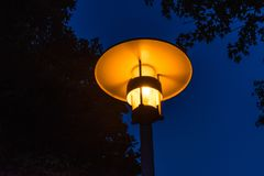Street light night view orange light with tree royalty free stock photography