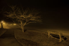 Street light park bench on frozen lakeshore Royalty Free Stock Photography