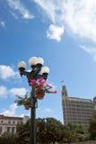 Street Light. A street light post in downtown San Antonio Stock Images