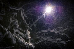 Street light shining through falling snow Royalty Free Stock Image