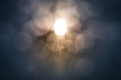 Street light shining through falling snow Stock Photo
