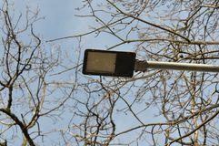 Street light. With tree branches against blue sky Royalty Free Stock Images