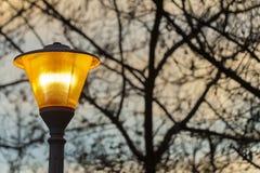 Street light at sunset Stock Photos