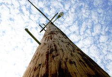 Street Light Telephone Pole Stock Photography