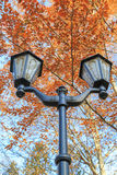 Street lights against the blue sky and autumn foliage Royalty Free Stock Image