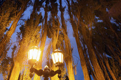 Street lights in El Calafate Royalty Free Stock Images