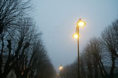 Street lights in foggy weather, late autumn, mistic haze or mist.  Stock Image