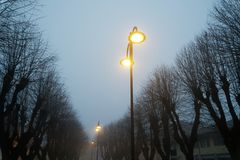 Street lights in foggy weather, late autumn, mistic haze or mist.  Stock Photography