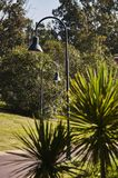 Street lights in the park royalty free stock photography