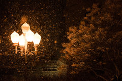 Street Lights in snow at night royalty free stock images