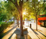 Street of Madrid in rays of evening sun. Spain Stock Photo