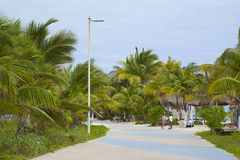 Street in Malahual -Costa Maya, Mexico, Caribbean Royalty Free Stock Photography