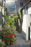 Street in Marciana town with flowering plants Stock Image