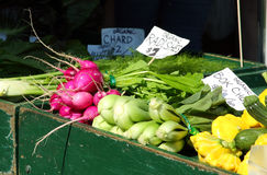 Street Market Vegetables. Vegetables in a street Market, including radishes, bok choy and cucumbers royalty free stock photos