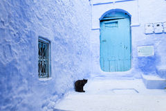 Street in medina of blue town Chefchaouen, Morocco.  Stock Photo