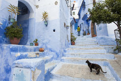 Street in medina of blue town Chefchaouen, Morocco Stock Photography