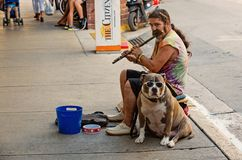 Street musian or man playing flute with dog in USA royalty free stock photo