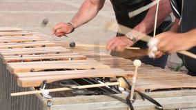A street musician in a black T-shirt is playing a xylophone. A street musician in a black T-shirt is playing a xylophone stock footage