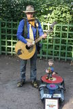 Street musician. Earns money and entertains passers-by in the summer garden in St. Petersburg Royalty Free Stock Photography