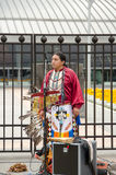 Street musician in the national Indian clothes Royalty Free Stock Image