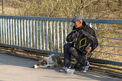 Street musician playing the accordion. Balashikha, Russia. Stock Photography