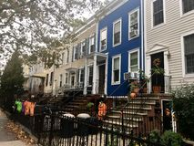 Street. NYC street in Park Slope during Halloween Royalty Free Stock Photo