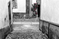 Street Obidos Royalty Free Stock Photos
