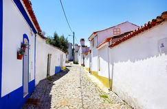 Street Of Terena Village Stock Images