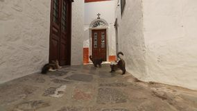 Street of the old Greek town. Paving in old city stock footage