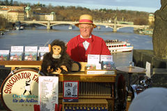 Street organ grinder on Charles Bridge. Prague Stock Image