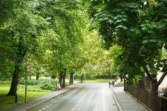 Street in Oslo city Stock Photography