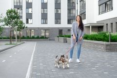 Street outdoors of beautiful and fashionable brunette woman with her husky puppy stock photos