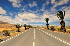Street with Palm Trees and Volcano in the background. La Oliva, Fuerteventura Spain Stock Images