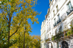 Street of Paris with buildings summertime. Street of Paris with buildings and trees summertime Royalty Free Stock Photos
