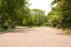 Street in the park. Street and the green grass,in the park on the outdoor Royalty Free Stock Photo
