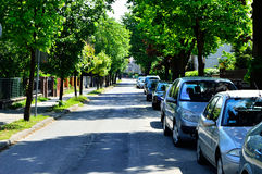 Street and parked cars with tree Royalty Free Stock Photos
