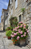 Street in Perast Royalty Free Stock Photos