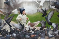 Street portrait of the little boy feeding pigeons with bread
