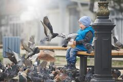 Street portrait of the little boy feeding pigeons with seeds