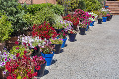 Street pot flowers decoration in Spain Stock Photos