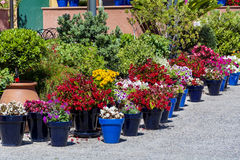 Street pot flowers decoration in Spain Royalty Free Stock Images