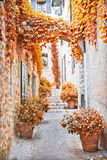 Street in Provence during the fall Stock Photos