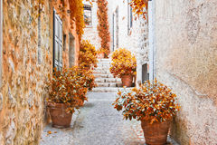 Street in Provence during the fall Stock Photography