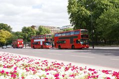 Street, red double-decker buses, & cars in London, England. royalty free stock images