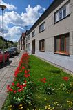 Street with red tulips and grass in front of houses. Royalty Free Stock Photo