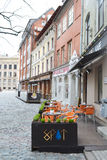 Street in Riga. Royalty Free Stock Image