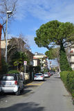 Street in Rimini. Stock Photo