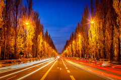 Street road in evening Royalty Free Stock Image
